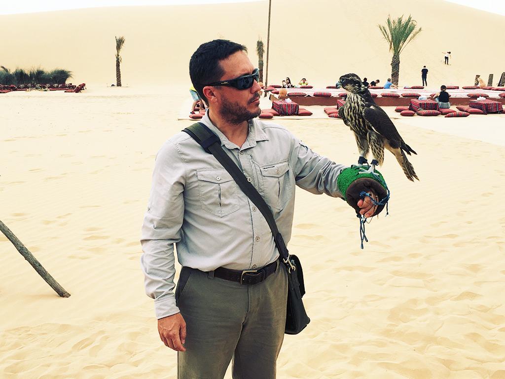 Desert Safari Tour Abu Dhabi Dubai UAE Holding a Falcon