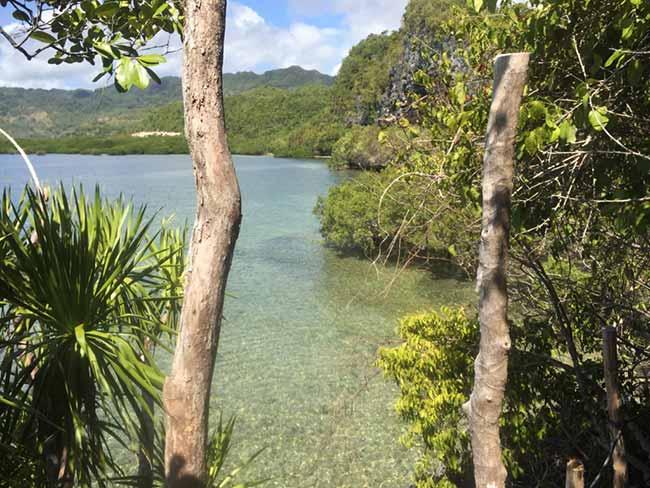 Lamanoc Island Anda Bohol Philippines View