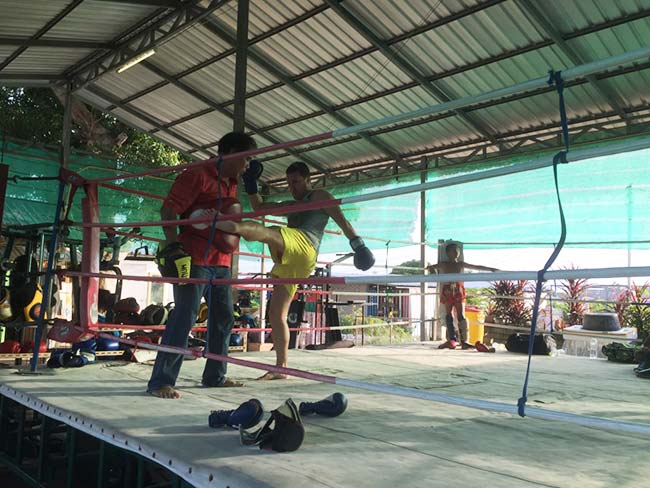 One-Hour Muay Thai Workout Plan for Expats in Thailand - Leg Kick