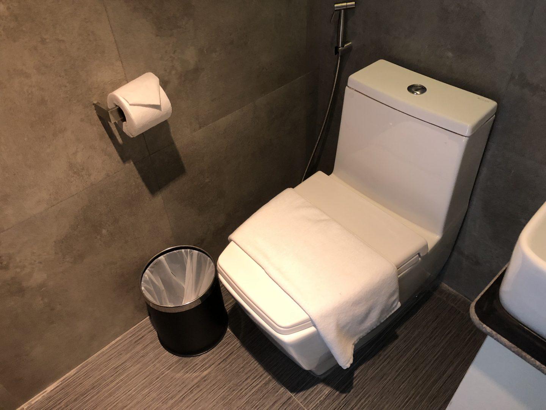 Tera Hotel Vientiane Laos Toilet
