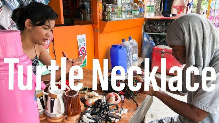 A Turtle Necklace, a Crazy Woman, and a Concrete Block